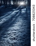 night dark forest in fall... | Shutterstock . vector #708825343