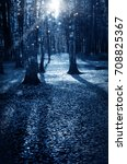 night dark forest in fall... | Shutterstock . vector #708825367