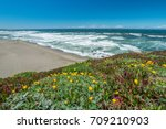 view of the beach from the... | Shutterstock . vector #709210903