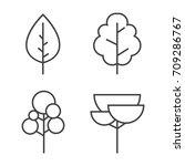 set of vector line trees.... | Shutterstock .eps vector #709286767