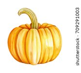 pumpkin watercolor | Shutterstock . vector #709291003