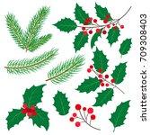 set of fir tree and mistletoe...   Shutterstock .eps vector #709308403