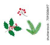 vector flat holly mistletoe... | Shutterstock .eps vector #709308697