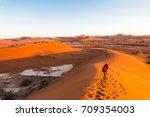 namib desert  girl climbing and ...   Shutterstock . vector #709354003