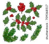 set of fir tree and mistletoe... | Shutterstock .eps vector #709368517
