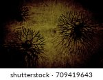abstract pattern of dry tree | Shutterstock . vector #709419643