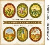 vintage colorful harvest labels ...   Shutterstock .eps vector #709432837