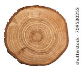cross section of oak grove tree ... | Shutterstock . vector #709530253