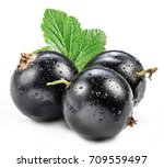 Black Currant With Currant Lea...