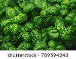 fresh basil on a dark... | Shutterstock . vector #709594243