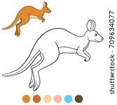 color me  kangaroo. cute...   Shutterstock .eps vector #709634077