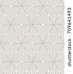vector seamless pattern. modern ... | Shutterstock .eps vector #709641493
