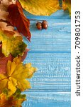 autumn leaves and acorns over... | Shutterstock . vector #709801753