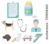 vet clinic. treatment of sick... | Shutterstock .eps vector #709858363