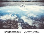 reflection of sky with shoe...   Shutterstock . vector #709943953