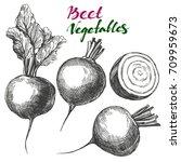 beet vegetable set. detailed... | Shutterstock .eps vector #709959673