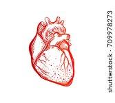 heart. human body. the element... | Shutterstock .eps vector #709978273