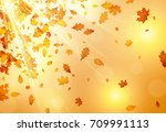shining autumn background with... | Shutterstock .eps vector #709991113