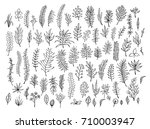 outlined silhouettes meadow... | Shutterstock .eps vector #710003947