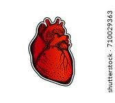 heart. human body. the element... | Shutterstock .eps vector #710029363