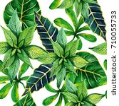tropical hawaii leaves palm...   Shutterstock . vector #710055733