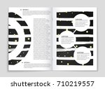abstract vector layout... | Shutterstock .eps vector #710219557