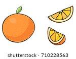 vector illustration of juicy... | Shutterstock .eps vector #710228563