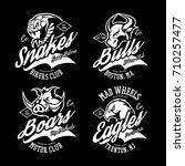 vintage furious boar  eagle ... | Shutterstock .eps vector #710257477