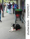 Small photo of Outside a market in Akaroa, New Zealand