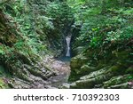 beautiful canyon in the forest... | Shutterstock . vector #710392303