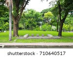 green tree in the public  park | Shutterstock . vector #710640517
