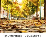 autumn leaves on the pedestrian ... | Shutterstock . vector #710815957