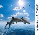 marine wildlife background  ... | Shutterstock . vector #710941813
