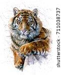 tiger watercolor | Shutterstock . vector #711038737