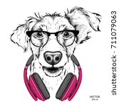 dog in glasses and headphones.... | Shutterstock .eps vector #711079063