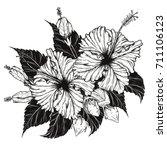 hibiscus flower vector by hand... | Shutterstock .eps vector #711106123