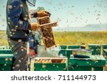 Small photo of Beekeepers collect honey