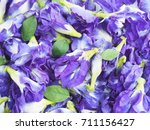 close up blue butterfly pea... | Shutterstock . vector #711156427