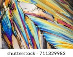 colorful microscopic shot of... | Shutterstock . vector #711329983