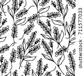 lavender illustration.... | Shutterstock . vector #711577033
