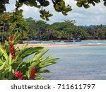 Tropical Coast With Boats And...
