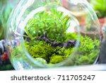 close up rectangular... | Shutterstock . vector #711705247