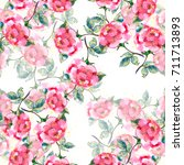 watercolor small pink roses on... | Shutterstock . vector #711713893