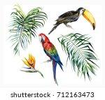 watercolor illustration of... | Shutterstock . vector #712163473