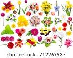 creative collection flower set... | Shutterstock . vector #712269937