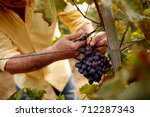 close up man picking red wine... | Shutterstock . vector #712287343