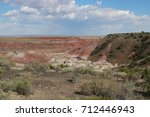 Small photo of Painted Desert Beauty