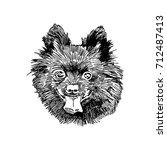 hand drawn vector illustration... | Shutterstock .eps vector #712487413