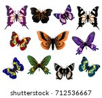 set of beautiful butterflies ... | Shutterstock .eps vector #712536667
