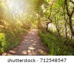 summer countryside morning... | Shutterstock . vector #712548547